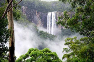 The majestic Minyon Falls, Byron Bay